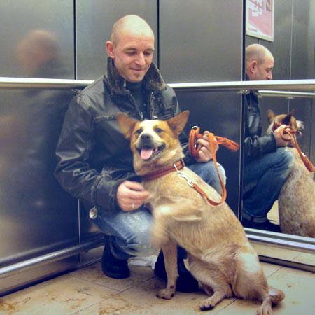 Philosophie der Hundeschule Mensch-Partner-Hund in Stuttgart